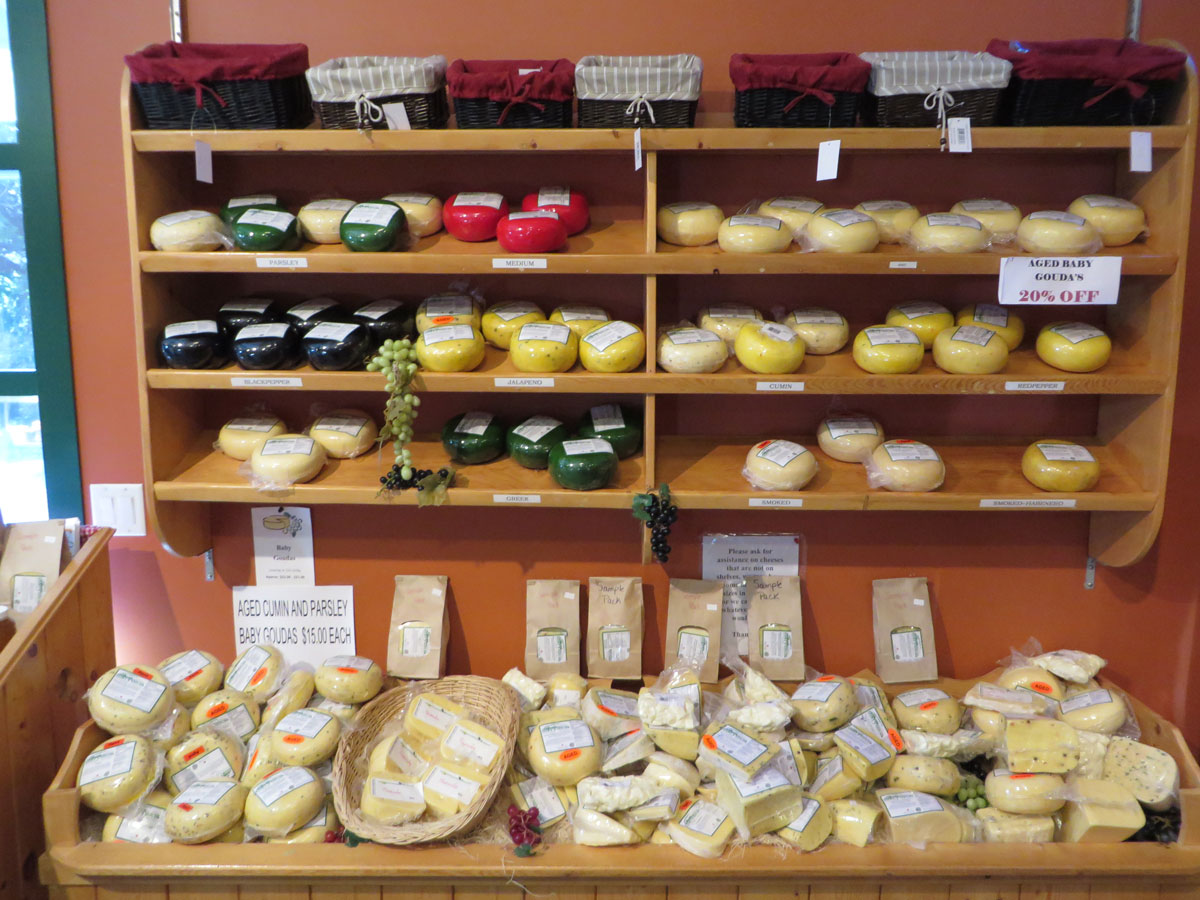 Gort's Gouda Cheese Farm produces a wonderful variety of cheeses, many of them goudas, some of them made with raw milk.